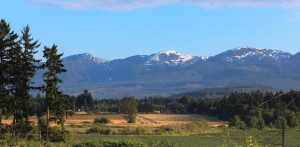 A mountain view from a building lot for sale at The Ridge on Vancouver Island.