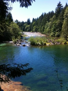 The Puntledge River Dam is a popular recreation spot with residents of the Comox Valley. The Ridge offers easy access to this and many other outdoor activities.