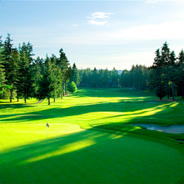 Crown Isle Vibrant, In-Demand Neighbourhood in Courtenay on Vancouver Island