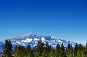 At The Ridge in Courtenay, snow typically stays on the mountains in the winter, providing the perfect climate to enjoy skiing in the morning and golf in the afternoon.