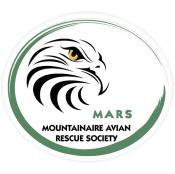 Construction continues on Mountainaire Avian Rescue Society wildlife hospital