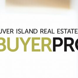 2019 Buyer Profile in Around Town